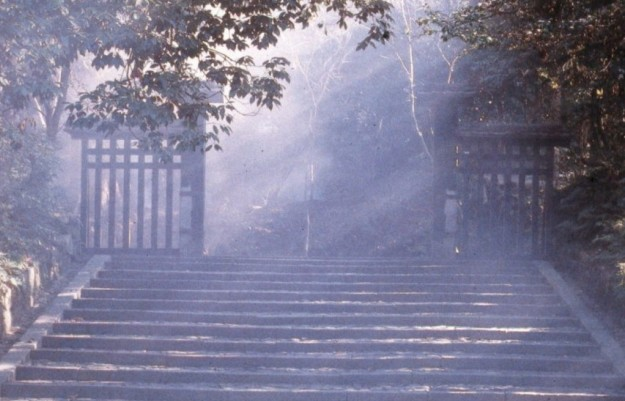 cropped-cropped-cropped-misty-entrance11.jpg