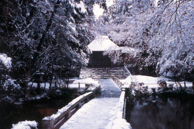Honen=in in snow